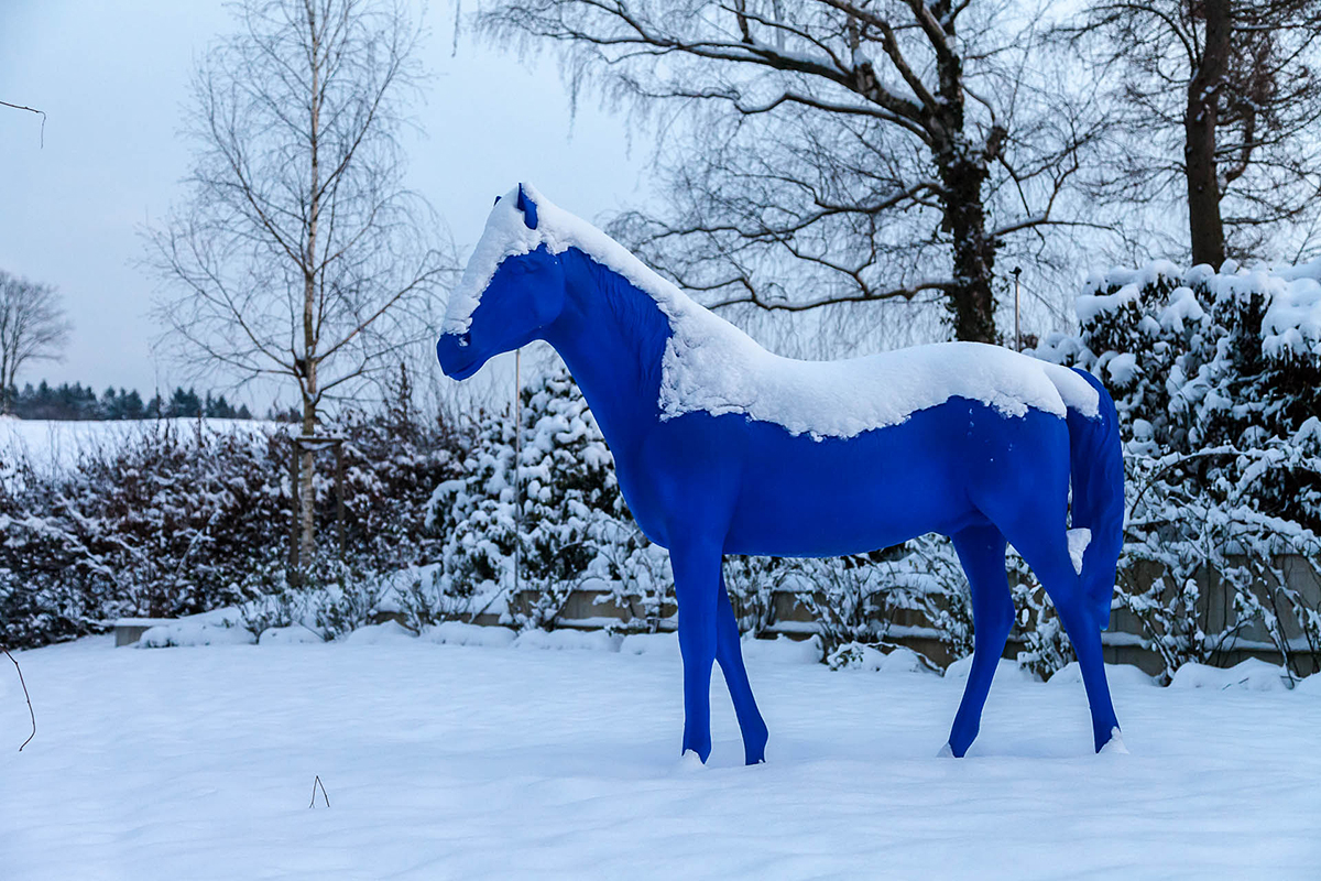 Winter in der Villa Belveder